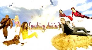 Pushing Daisies ( season 2 )