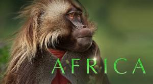 BBC David Attenborough's Africa